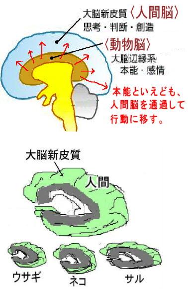 l]].jpg