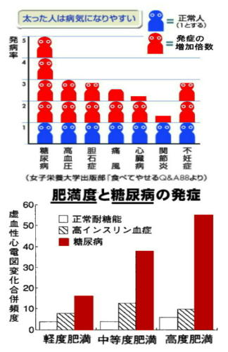 肥満は夫婦の性的関係悪化、グラフm.jpg