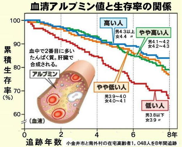 アルブミン値と生存率.jpg