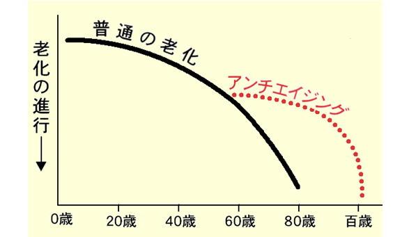 アンチエイジング曲線.jpg