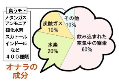 オナラの成分.jpg