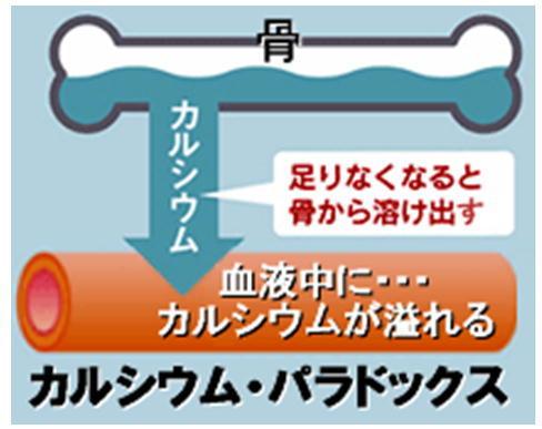 カルシウム・パラドックス.jpg