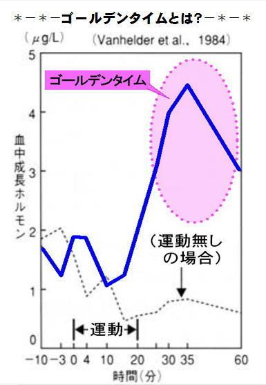 ゴールデンタイム グラフ.jpg