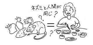 ネズミと人間が同じ.jpg
