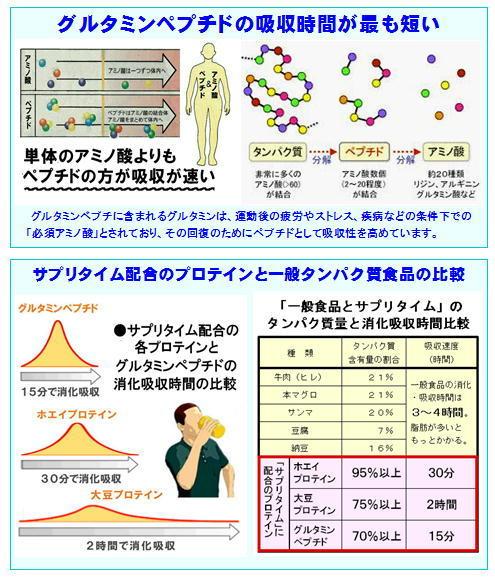 ペプチド、プロテインの吸収時間.jpg