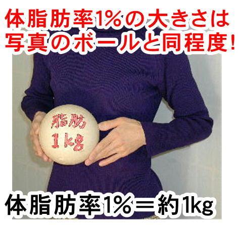 体脂肪とボール.jpg