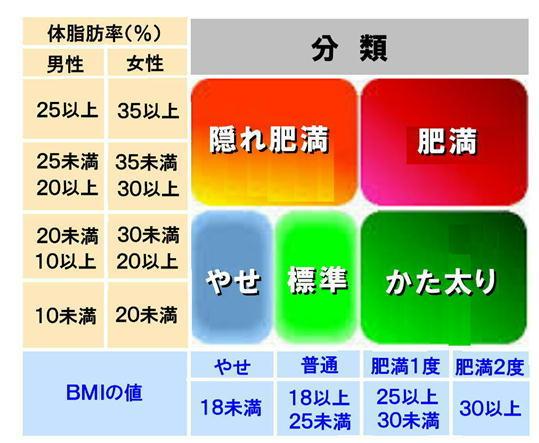 体脂肪率の分類.jpg