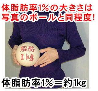 体脂肪率1%写真.jpg