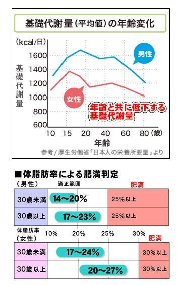 基礎代謝量の年齢変化.jpg
