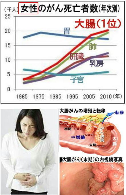 女性のがん死亡者数.jpg