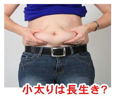 小太りの写真.jpg