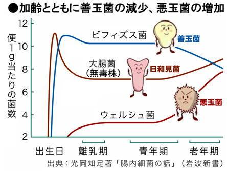 年齢とともに善玉減少.jpg
