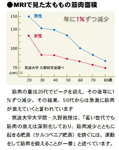 年齢と筋肉面積.jpg