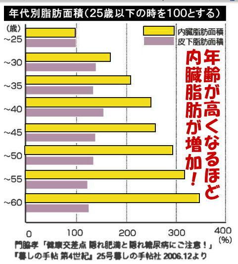 年齢別脂肪面積.jpg