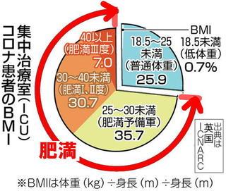 新型コロナと肥満.jpg