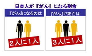 日本人ががんにな割合.jpg