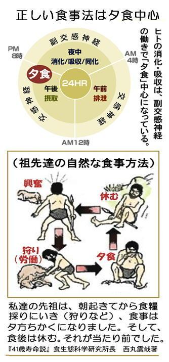 正しい食事法.jpg