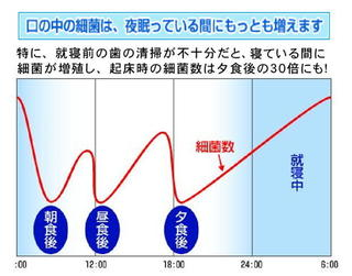 細菌の増殖グラフ.jpg