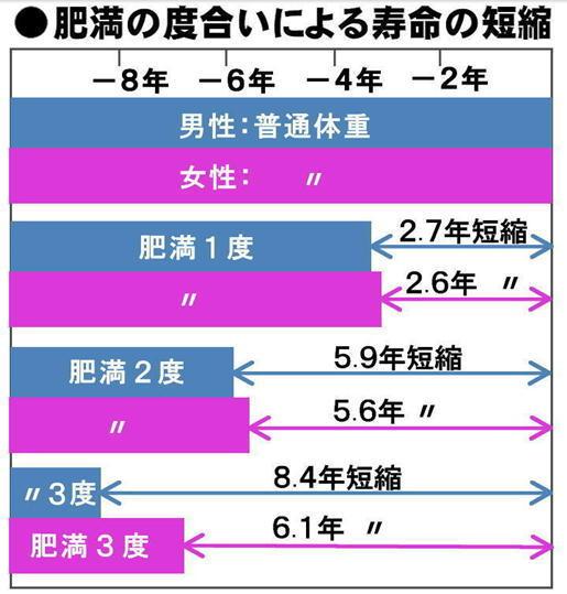 肥満度と寿命の短縮.jpg