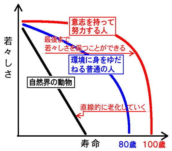 若々しさ と年齢グラフ.jpg