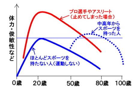 若者と高齢者の運動能力グラフ.jpg