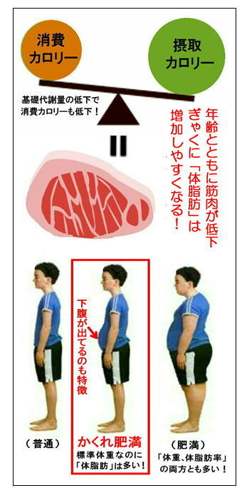 隠れ肥満のイラスト.jpg