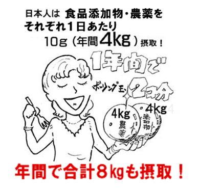 食品添加物の摂取 漫画.jpg