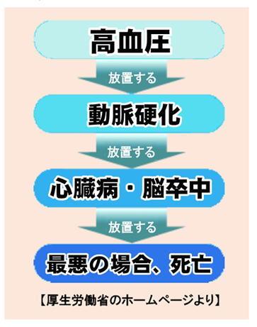 高血圧→動脈硬化.jpg