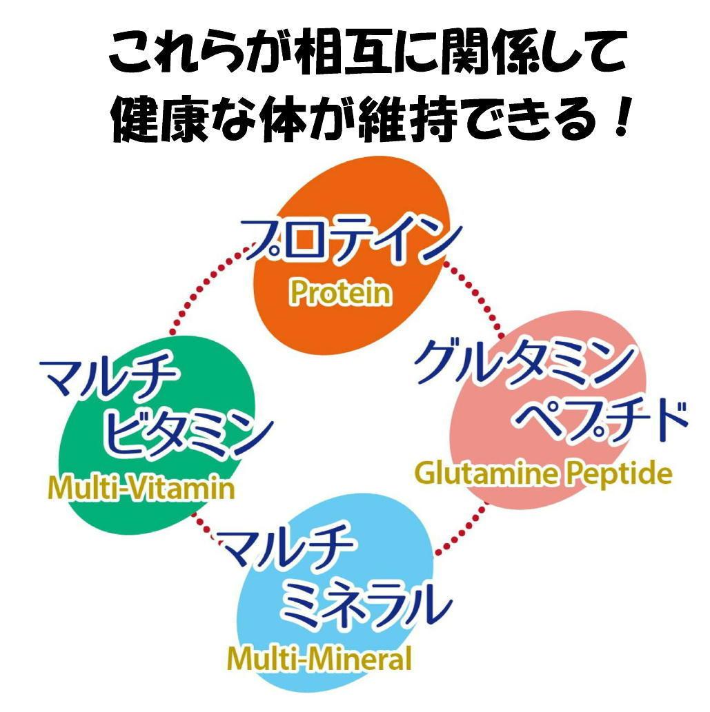 4つの栄養.jpg