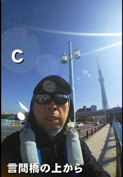 C言問橋の上から.jpg