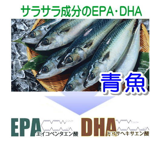 EPA DHA 魚.jpg