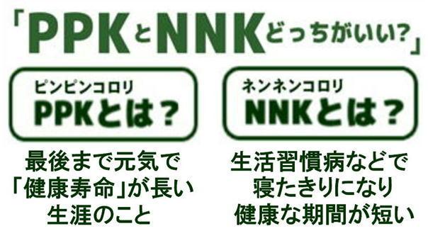 PPK NNK.jpg