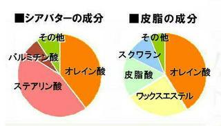 皮脂に近いオレイン酸丸グラフ.jpg