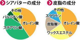オレイン酸円グラフ.jpg