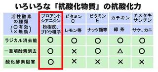 ポリと美肌3.jpg