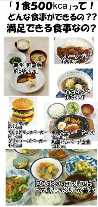 1日500kcalの食事.jpg