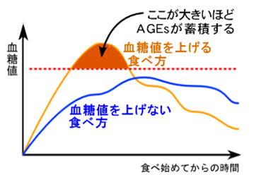 AGEsのグラフ.jpg