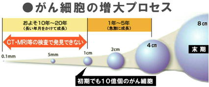 がん細胞の増大プロセス.jpg