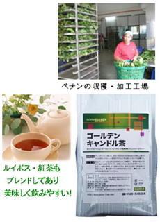 キャンドル茶.jpg