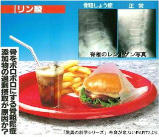 ハンバーガーのリン酸塩.jpg