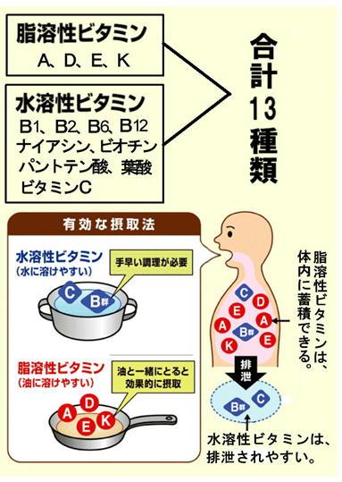 ビタミン 合計13種類.jpg