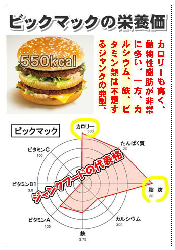 ビックマックの栄養価.jpg