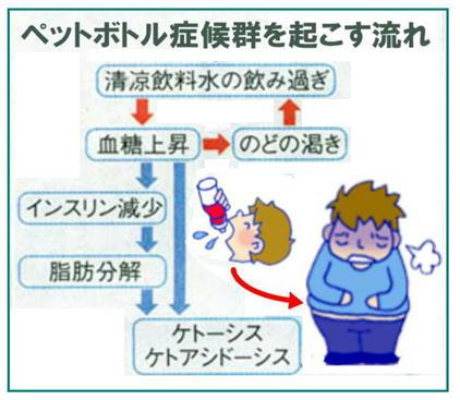 ペッボトル症候群を起こす流れ.jpg