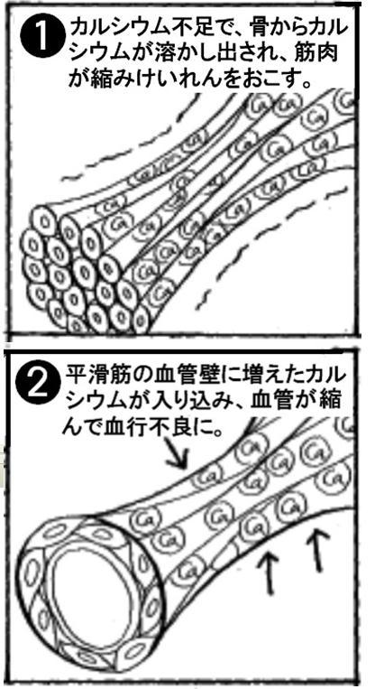 マンガ1,2.jpg