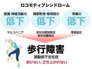 ロコモ図解修正.jpg