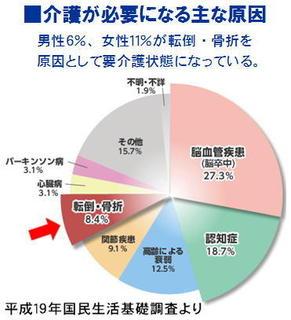 介護になる原因円グラフ.jpg