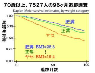 体型と生存率.jpg