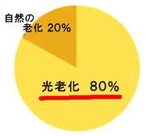 光老化円グラフ.jpg