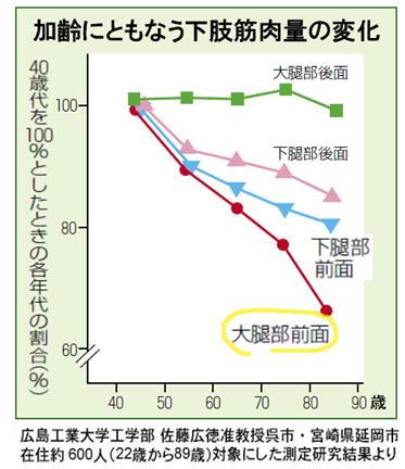加齢にともなう下肢筋肉量の変化.jpg
