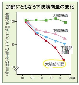 加齢にともなう筋肉量の変化グラフ.jpg